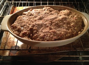 Crunchy Cranberry Apple Crisp (24)