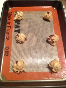 Cranberry Orange Melt-Away Cookies (10)
