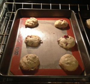 Cranberry Orange Melt-Away Cookies (8)