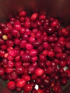 Fresh Apple Cranberry Sauce (43)