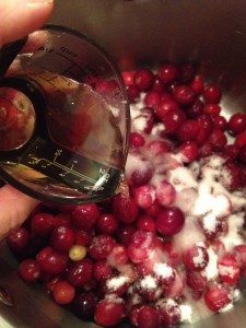 Fresh Apple Cranberry Sauce (41)
