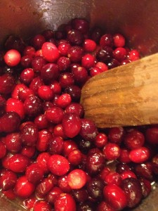 Fresh Apple Cranberry Sauce (25)