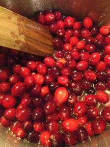 Fresh Apple Cranberry Sauce (20)