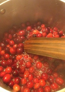 Fresh Apple Cranberry Sauce (14)