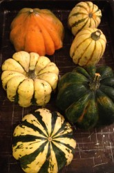 How to Roast and Puree Winter Squash
