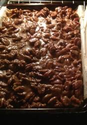Pecan Pie Squares (45)