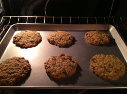 Best Oatmeal Chocolate Chip Cookies